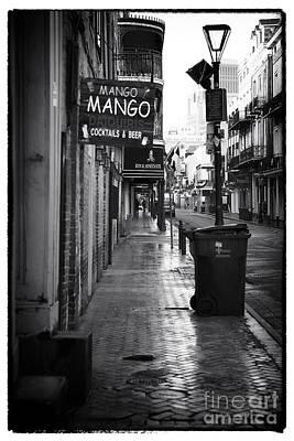 Mango Mango Poster by John Rizzuto