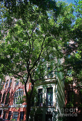 Poster featuring the photograph Manhattan Upper East Side Late Summer by Andy Prendy