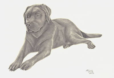 Poster featuring the drawing Man's Best Friend by Patricia Hiltz