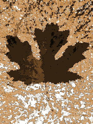Maple Leaf Brown  Hues Poster by R Muirhead Art