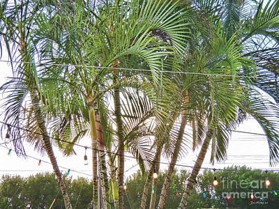 Marathon Palm Trees Poster by Joan  Minchak
