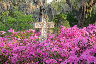 Poster featuring the photograph Marble Cross And Azaleas by Bradford Martin