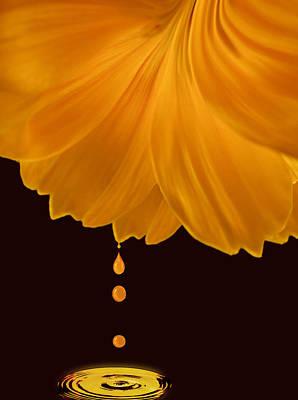 Marigold Factory Poster by Deborah Smith