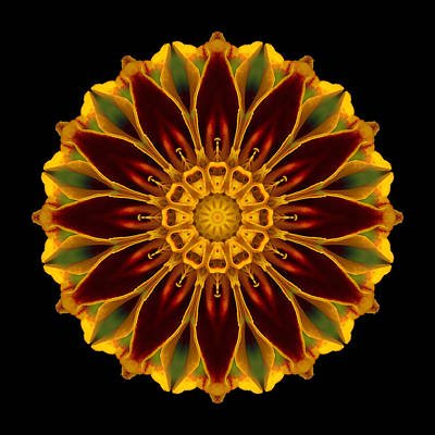 Poster featuring the photograph Marigold Flower Mandala by David J Bookbinder