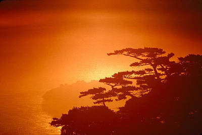 Marin County Sunset Fog Poster