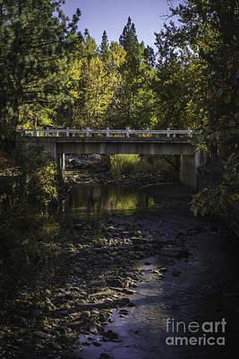 Markleeville Creek Poster by Mitch Shindelbower