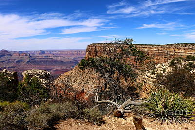 Marvelous Grand Canyon South Rim  Poster by Christiane Schulze Art And Photography