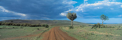 Masai Mara Game Reserve Kenya Poster by Panoramic Images