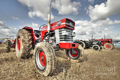 Massey 185  Poster by Rob Hawkins