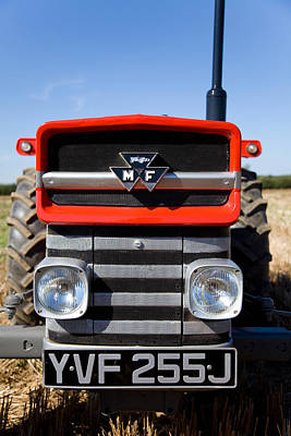 Massey Ferguson 135 Vintage Tractor Poster by Paul Lilley