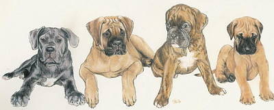 Mastiff Puppies Poster by Barbara Keith