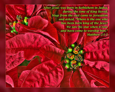 Matthew 2 1-2 Poster by Dawn Currie