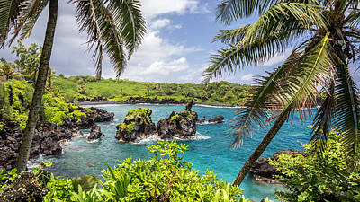Maui's Black Sand Beach Poster by Pierre Leclerc Photography