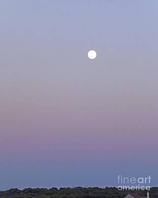 Mauve Moonlight Poster