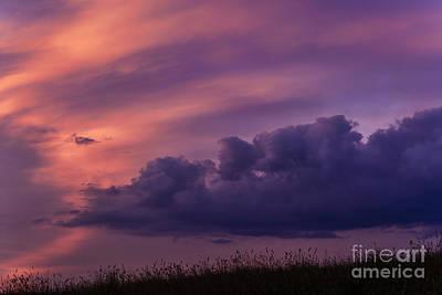 Mauve Sunrise Poster by Thomas R Fletcher
