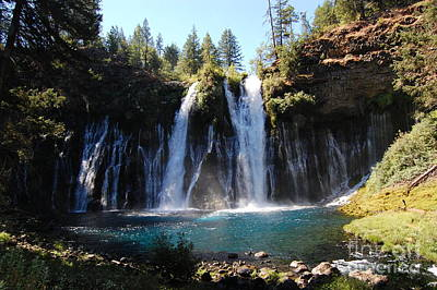 Poster featuring the photograph Mcarthur-burney Falls 2 by Debra Thompson