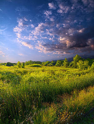 Meadow Poster by Phil Koch