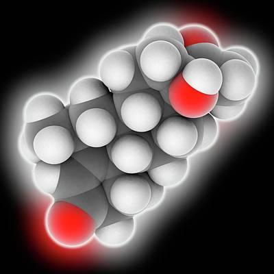 Medroxyprogesterone Drug Molecule Poster
