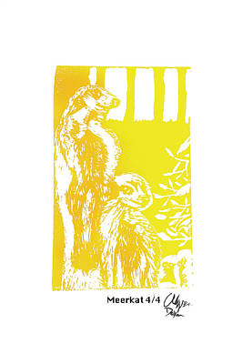 Meerkat 4/4    Poster
