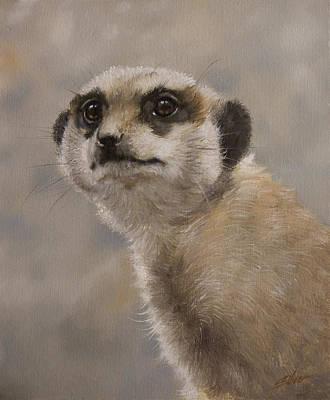 Meerkat Portrait I Poster
