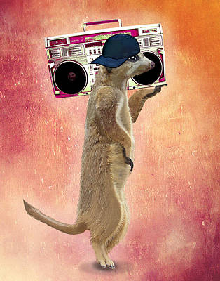 Meerkat With A Ghettoblaster Poster