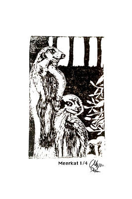 Meerkat1/4 Poster