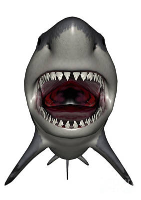 Megalodon Dinosaur With Mouth Open Poster
