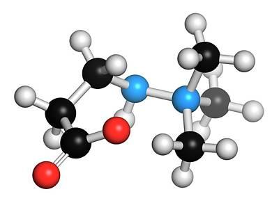 Meldonium Anti-ischemic Drug Molecule Poster