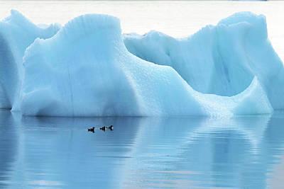 Melting Arctic Iceberg Poster