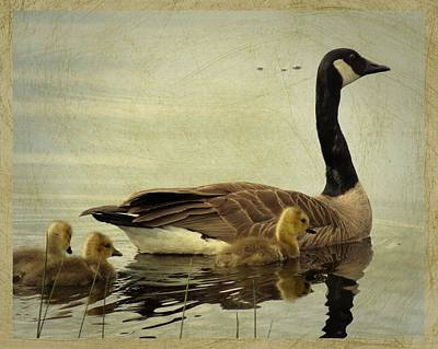 Memories Of Motherhood Poster by I'ina Van Lawick