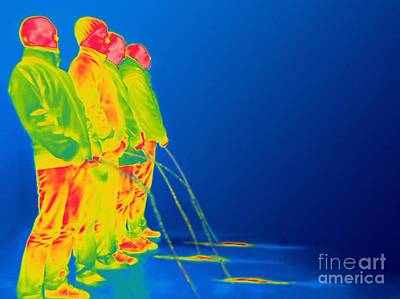 Men Urinating, Thermogram Poster by Thierry Berrod, Mona Lisa Production/ Science Photo Library