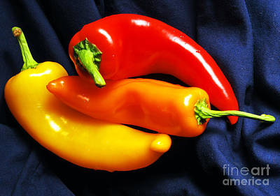Menage A Trois Peppers I Poster by Nancy Mueller