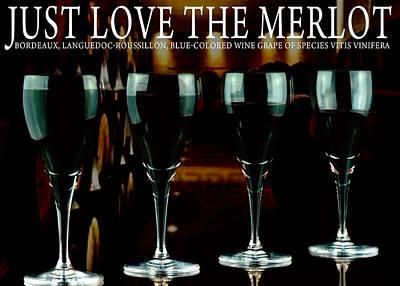 Merlot Wine Poster
