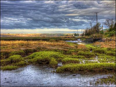 Merrimack River Marsh Poster