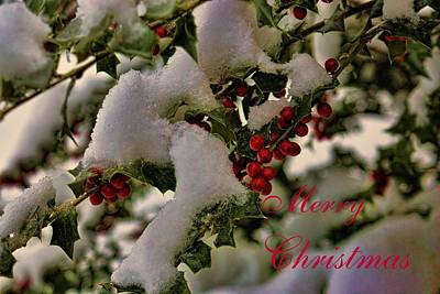 Merry Christmas Card Holly Poster