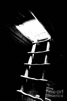 Mesa Verde National Park Kiva Ladder Conte Crayon Black And White Poster