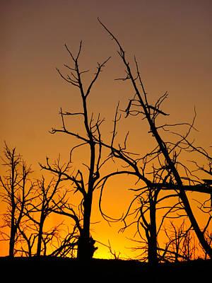 Mesa Verde Sunset Poster