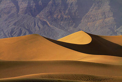 Mesquite Flat Sand Dunes And Grapevine Poster by David Wall