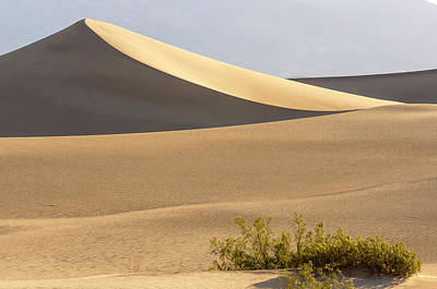 Mesquite Flat Sand Dunes At Dawn, Death Poster