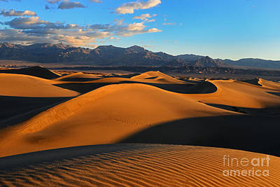 Mesquite Sand Dunes Death Valley Poster by Peter Dang