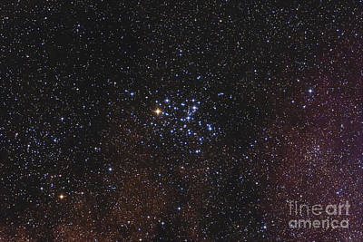 Messier 6, The Butterfly Cluster Poster by Alan Dyer