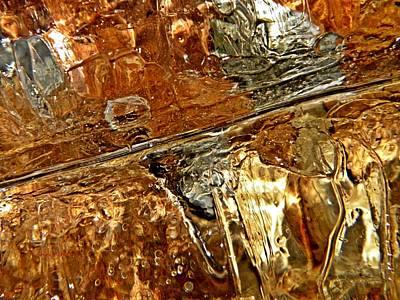 Metallic Leaves Under Ice Poster