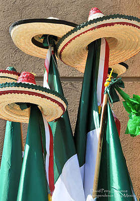 Poster featuring the photograph Mexican Independence Day - Photograph By David Perry Lawrence by David Perry Lawrence