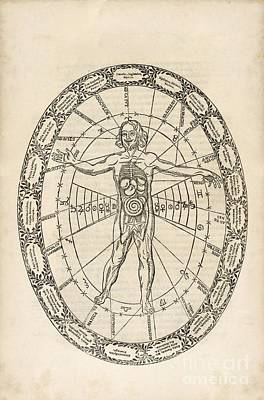 Microcosm And Macrocosm, 17th Century Poster