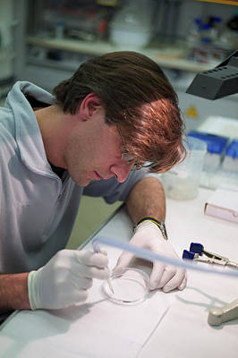 Microfluidic Probes Poster