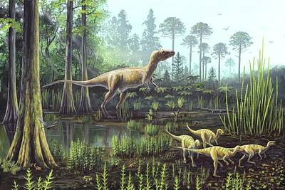 Middle Jurassic Dinosaurs Poster