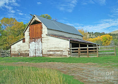 Midway Vintage Barn Hotchkiss Co Poster