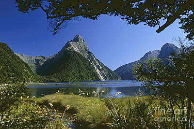 Poster featuring the photograph Milford Sound  New Zealand by Rudi Prott