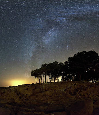Milky Way Over Coastal Trees Poster by Laurent Laveder