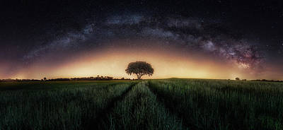 Milky Way Over Lonely Tree Poster
